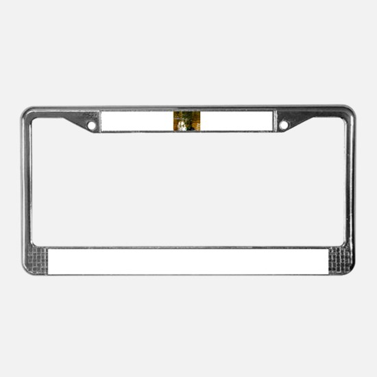 Spring License Plate Frame