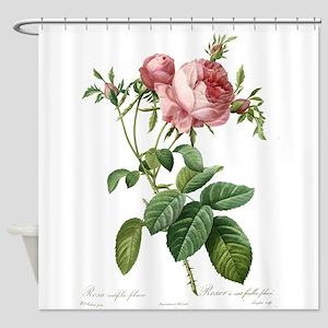 Lovely vintage pink rose Shower Curtain