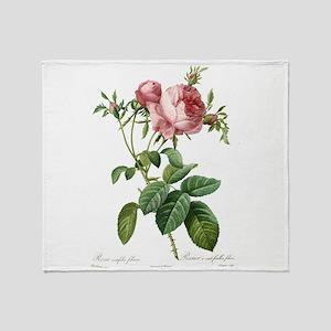 Lovely vintage pink rose Throw Blanket
