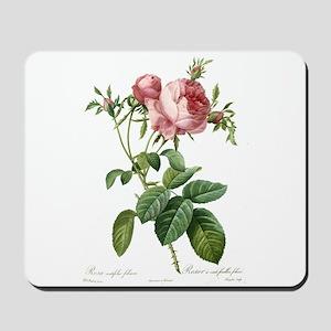 Lovely vintage pink rose Mousepad