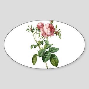 Lovely vintage pink rose Sticker