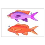 Yellowstriped Fairy basslet Anthias Couple Posters