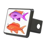Yellowstriped Fairy basslet Anthias Couple Hitch C