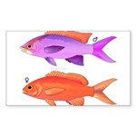 Yellowstriped Fairy basslet Anthias Couple Sticker