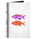 Yellowstriped Fairy basslet Anthias Couple Journal