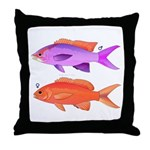 Yellowstriped Fairy basslet Anthias Couple Throw P