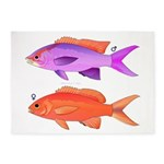 Yellowstriped Fairy basslet Anthias Couple 5'x7'Ar
