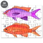 Yellowstriped Fairy basslet Anthias Couple Puzzle