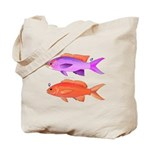 Yellowstriped Fairy basslet Anthias Couple c Tote
