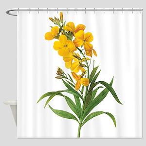 pretty vintage yellow flowers. botanical illustrat