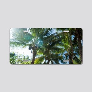 Tropical palms lit by the s Aluminum License Plate