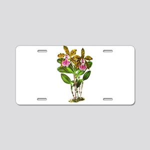 Tropical Cattleya Orchid by Aluminum License Plate