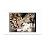"""""""Leopard-Wuff Kiss"""""""