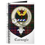 CarnegieCBT.jpg Journal