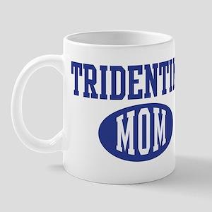 Tridentine mom Mug