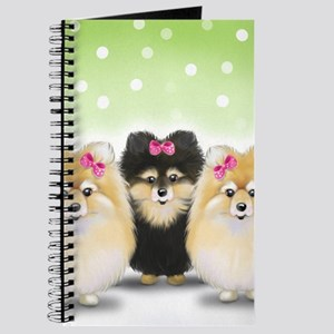 The Pom sisters Journal
