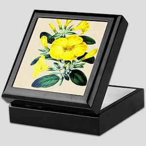 Paxton's  Linum trigynum Keepsake Box