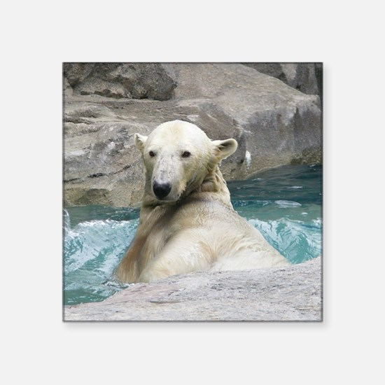 "Swimming Polar Bear Square Sticker 3"" x 3"""