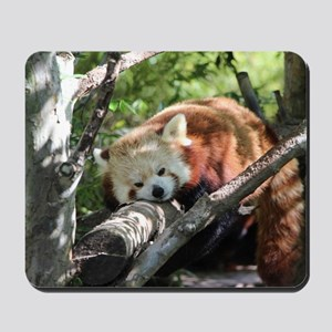 Sleepy Red Panda Mousepad