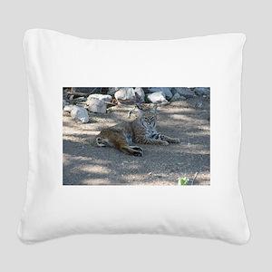 Bobcat Square Canvas Pillow