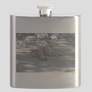 Bobcat Flask
