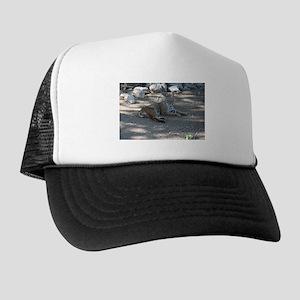 Bobcats Trucker Hats - CafePress c288f799ce24