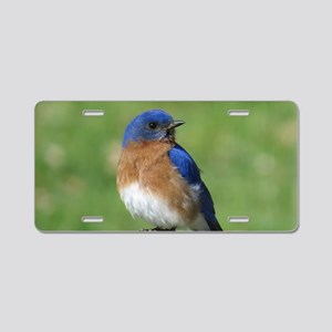 Bluebird Aluminum License Plate