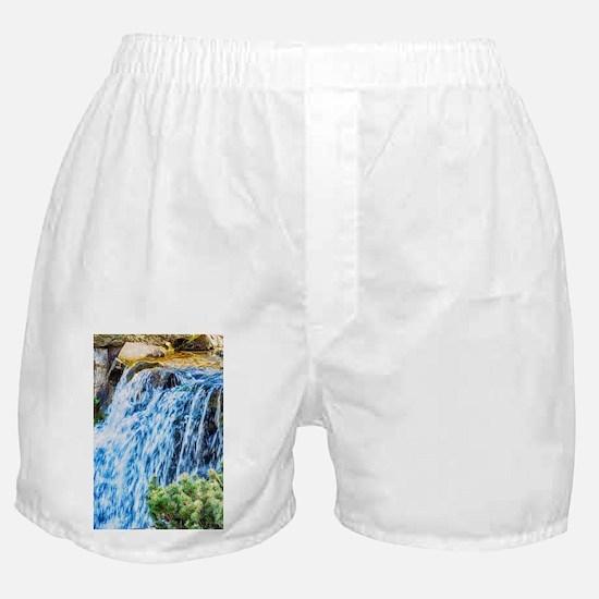 Small Waterfall Boxer Shorts