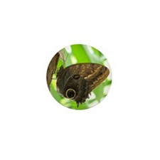 Owl Butterfly Mini Button