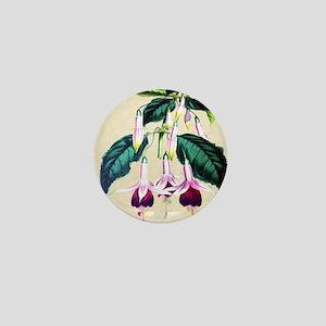 Paxton's Fuchsia Queen Victoria Mini Button