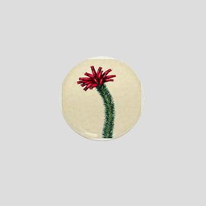Paxton's Erica Murrayana Mini Button