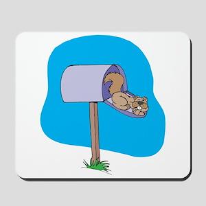 Squirrel Sleeping in Mailbox Mousepad