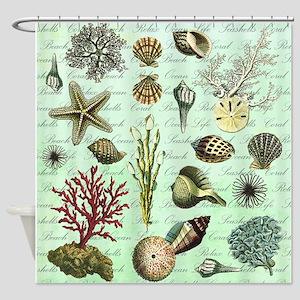 modern vintage french seashells Shower Curtain