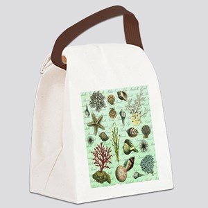 modern vintage french seashells Canvas Lunch Bag