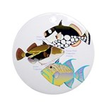 3 Triggerfish Ornament (Round)