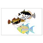 3 Triggerfish Posters