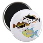 3 Triggerfish Magnets