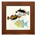 3 Triggerfish Framed Tile