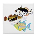 3 Triggerfish Tile Coaster