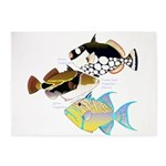 3 Triggerfish 5'x7'Area Rug
