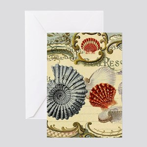 modern beach seashells seahorse Greeting Cards
