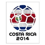 Costa Rica World Cup 2014 Small Poster