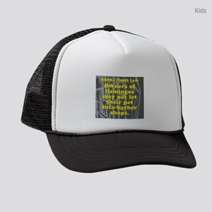 Alaska Dumb Law #8 Kids Trucker hat