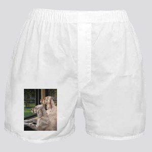 English Setter Puppies Boxer Shorts