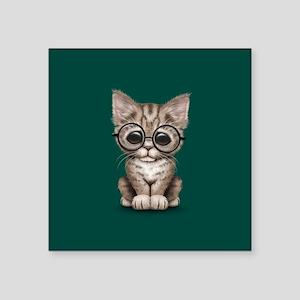 Cute Tabby Kitten with Eye Glasses on Teal Blue St