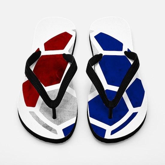 France World Cup 2014 Flip Flops