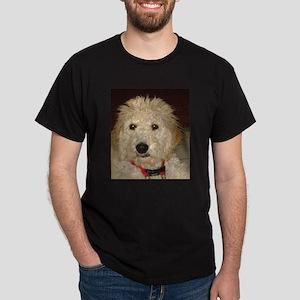 DSC00041 T-Shirt