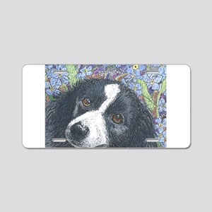 Forget me not Border Collie Aluminum License Plate
