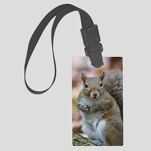 Cute Squirrel Large Luggage Tag