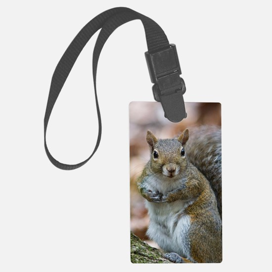 Cute Squirrel Luggage Tag